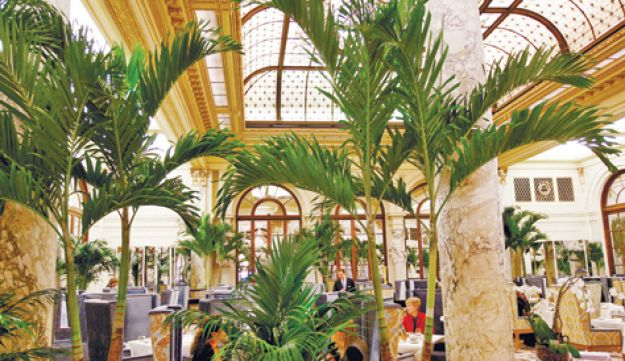 The  Palm Court at the Plaza Hotel in 2008.