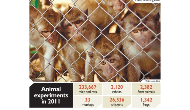 Animal experiments in 2011