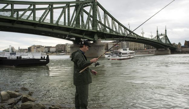 Fishing on the Danube