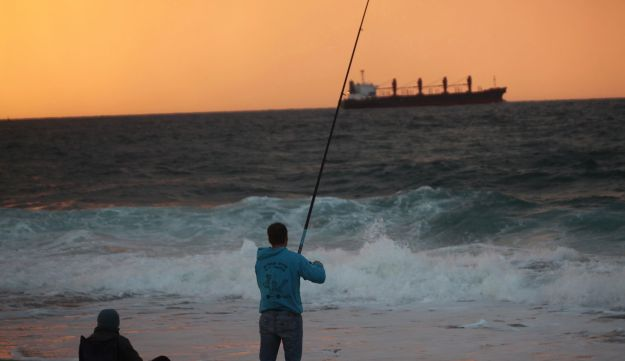 Foreign fish threaten israeli marine life in eastern for Where to get a fishing license near me