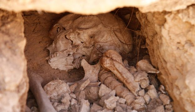 A skeleton discovered at the site of Tel Aviv University's new student dorms.