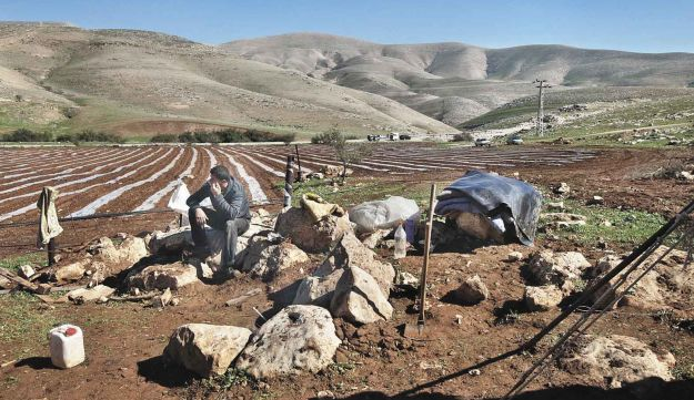 Jordan Valley land that a Palestinian farmer is leasing back from settlers.