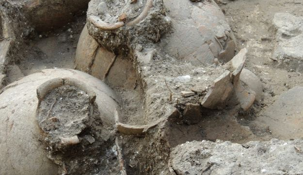 The ruins of a recently discovered wine cellar in a Canaanite palace