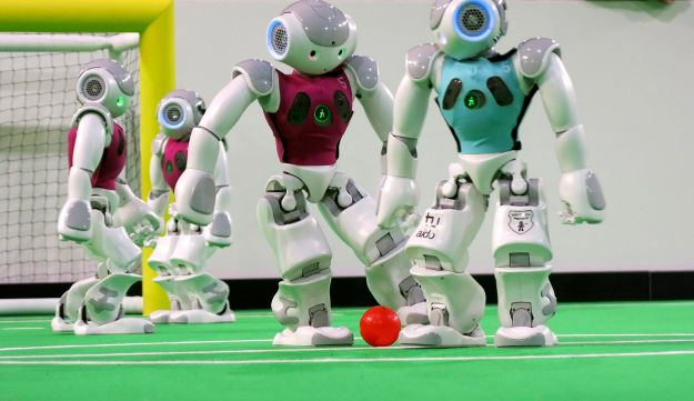 Robots in the 'standard platform' division compete at the RoboCup championships
