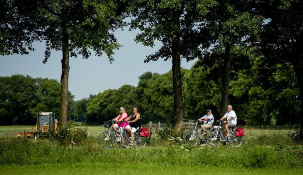 Participants of the Fietsvierdaagse (Four day bicycle tour) ride their bicycles in Drenthe