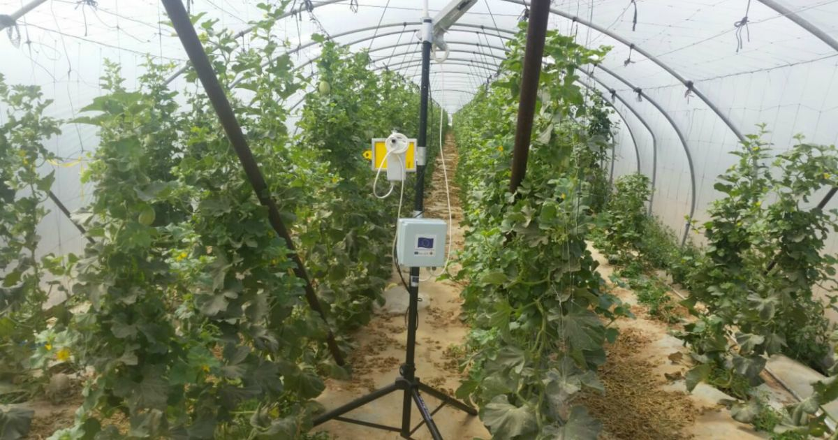How Israeli technology could solve the next food crisis