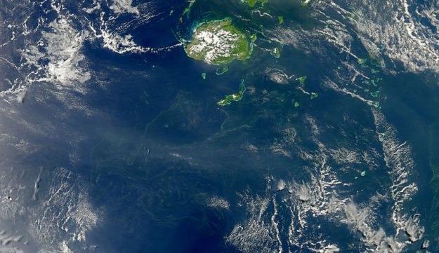 Cyanobacteria are one of the bacterial forms that have chlorophyll, and like plants, use it to convert sunlight into food. The bacteria are microscopic, but here we see they can proliferate to the point of being noticed by NASA: A bloom of cyanobacteria forming around Fiji.