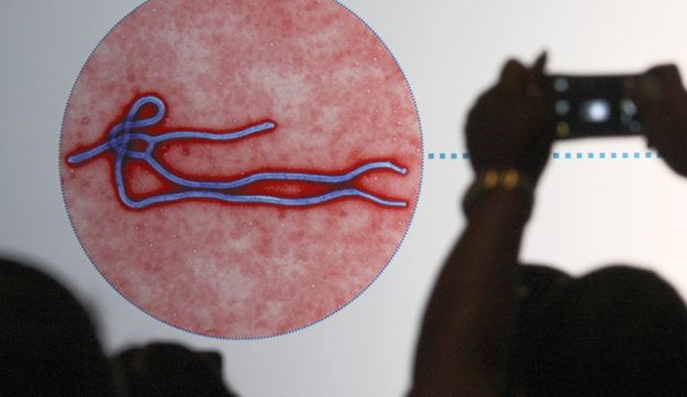 This file photo taken on November 07, 2014 shows an audience member photographing a slide showing the likeness of an Ebola virus during an Ebola safety presentation.