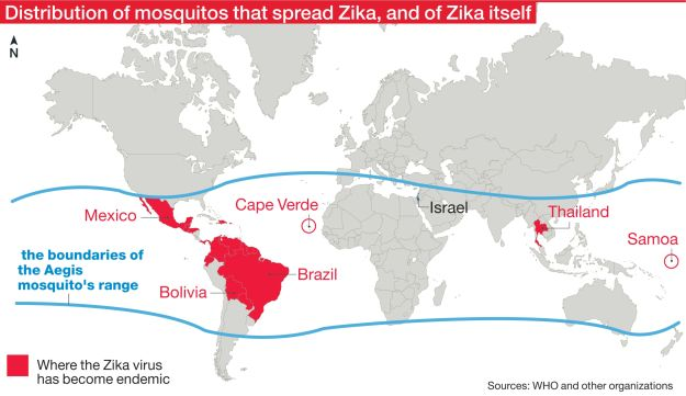 Zika: The range of mosquitoes that carry and transmit the disease. Basically, everywhere it isn't freezing. The red parts show where Zika has become endemic.