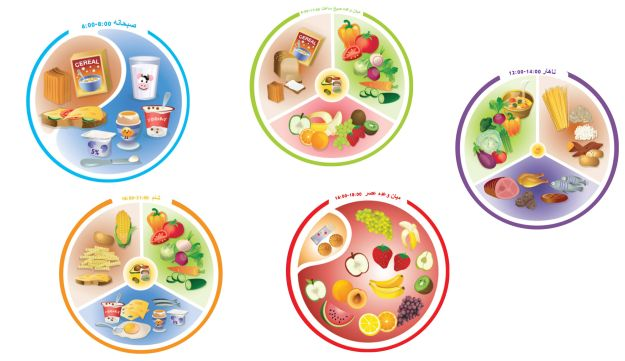 'Plate My Meal' in Farsi: Could an Israeli startup teach better nutrition habits to Iranian children?