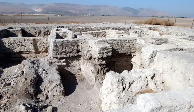 The excavation of Tel Rehov, where ancient Israelites cultivated bees ... Turkish bees. The local variety of bee was much more aggressive and much less productive.