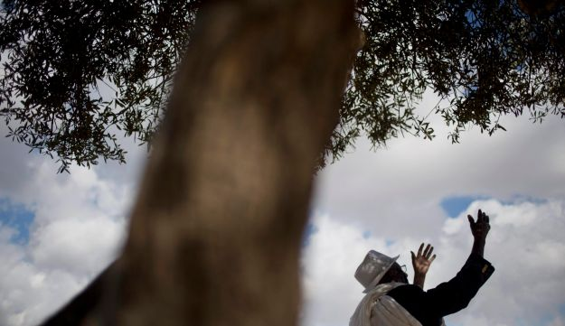 An Ethiopian Jew prays during the 'Sigd' holiday in Jerusalem, Wednesday, Nov. 11, 2015.