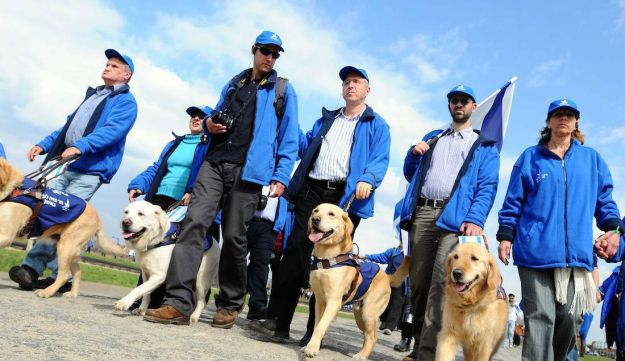 Participants in the March of the Living walking with their guide dogs, 19 April 2012.