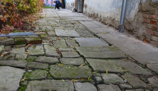 In this picture taken on Monday October 26, 2015, Tomas Jelinek looks at pavement made of tombstones in efforts to restore a former Jewish cemetery in Prostejov, Czech Republic. A team of volunteers, led by Jelinek, is trying to restore the graveyard desecrated by Nazi's over 70 years ago. Some of its 2000 removed tombstones have been used for decades as construction materials while the graveyard itself now is a park where people walk their dogs.