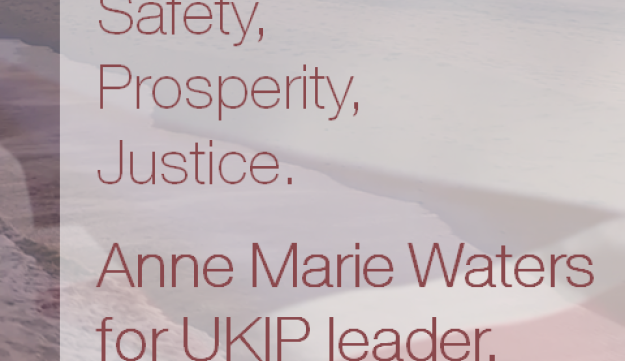 A campaign poster for UKIP leadership candidate Anne Marie Waters.