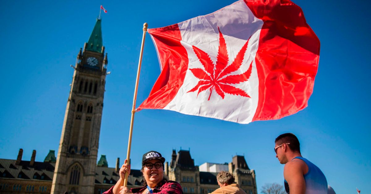 the problem of marijuana in canada Canada is set to launch its recreational marijuana market in october 2018 as it stands, no effective device has been developed to accurately gauge cannabis impairment.