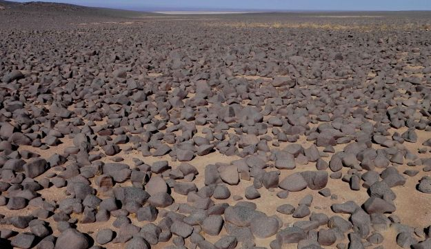 The surface of the Black Desert of Jordan, covered in basalt rocks. Archaeologists could be forgiven for surprise at discovering signs of life, from sheep 14,500 years ago to humans over thousands of years.