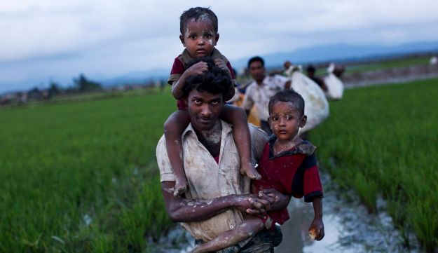 Myanmar's Rohingya ethnic minority members walk through rice fields after crossing over to the Bangladesh side of the border near Cox's Bazar's Teknaf area, Friday, Sept. 1, 2017.