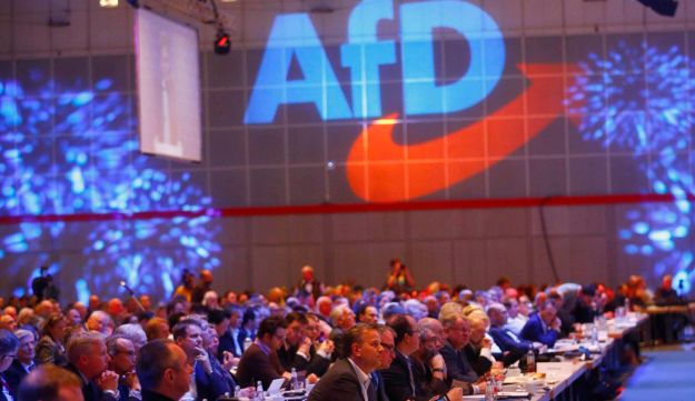 Delegates at the anti-immigration party Alternative for Germany (AfD) congress in Hanover, Germany December 2, 2017