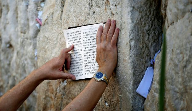 A Jewish worshipper holds a religious script against the stones of the Western Wall as he takes part in a mass prayer in Jerusalem's Old City during the Jewish holiday of Sukkot October 19, 2016.
