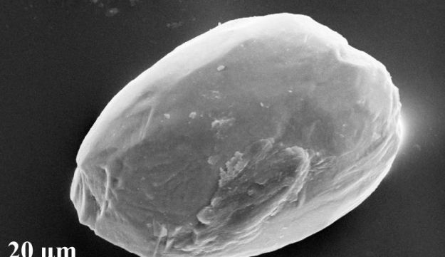 Electron microscope image of a dust particle rounded by eolian transport. It originated in the Sahara desert and was found in 7.2 million-year-old sediments in Greece.