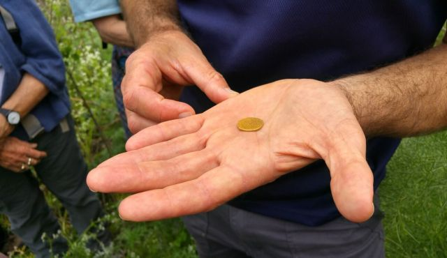 Israeli hiker stumbles on rare gold coin of Emperor Augustus in