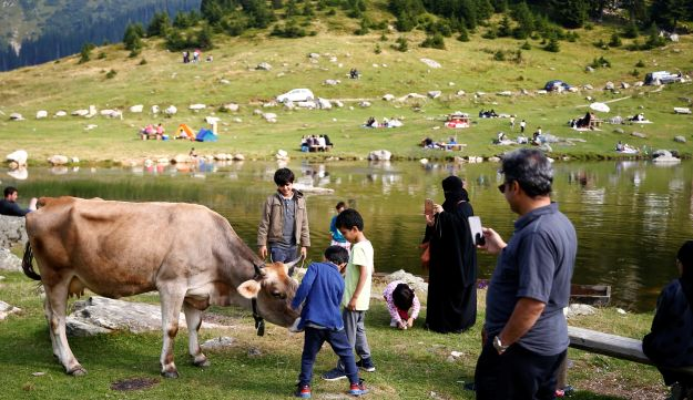 Tourists from the Middle East take pictures of a cow along the Prokosko Lake near Fojnica, Bosnia and Herzegovina, August 20, 2016.
