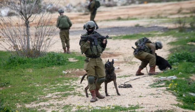 Israeli soldiers search the scene of the attack outside the West Bank city of Ariel, February 5 2018