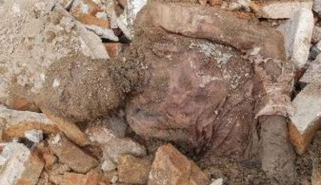 Image of Reza Shah Pahlavi's mummified remains discovered during construction work at a Shiite shrine in Tehran, April 23, 2018.