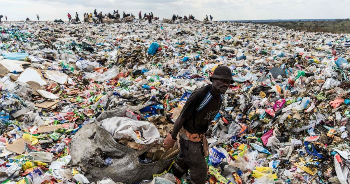 Wasted opportunities: Recycling stalls due to sorting problems and