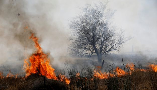 A fire burns in scrubland on the Israeli side of the border between Israel and the Gaza Strip, near kibbutz Or HaNer June 3, 2018