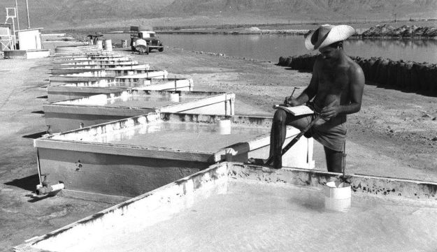 A handout photograph from the GPO, shows an agriculture student performing tests on miniature potash evaporation pans at the research station of the Dead Sea potash works in Sdom dated to 1959.