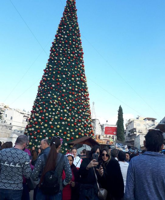 Jews Christmas Trees.For Israeli Jews A Newfound Love Affair With Christmas