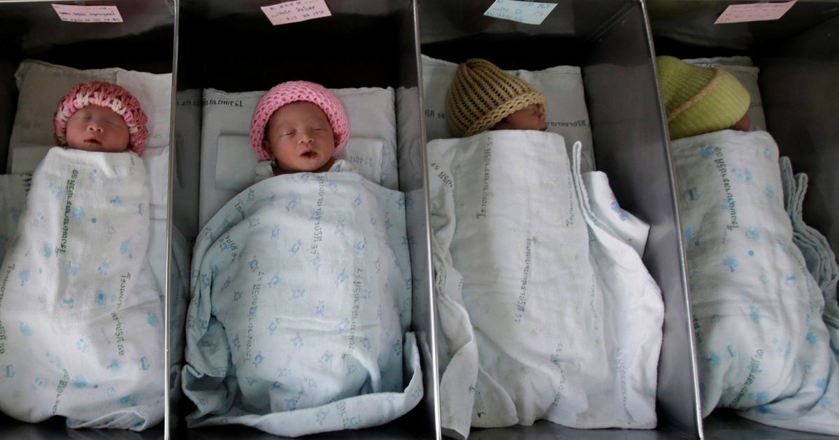 Semi-identical twins identified in pregnancy for first time