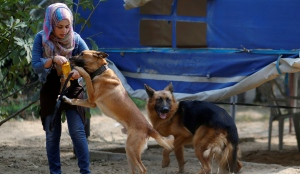 Palestinian woman Talya Thabet teaches a dog obedience commands in the central Gaza Strip, October 16, 2019.