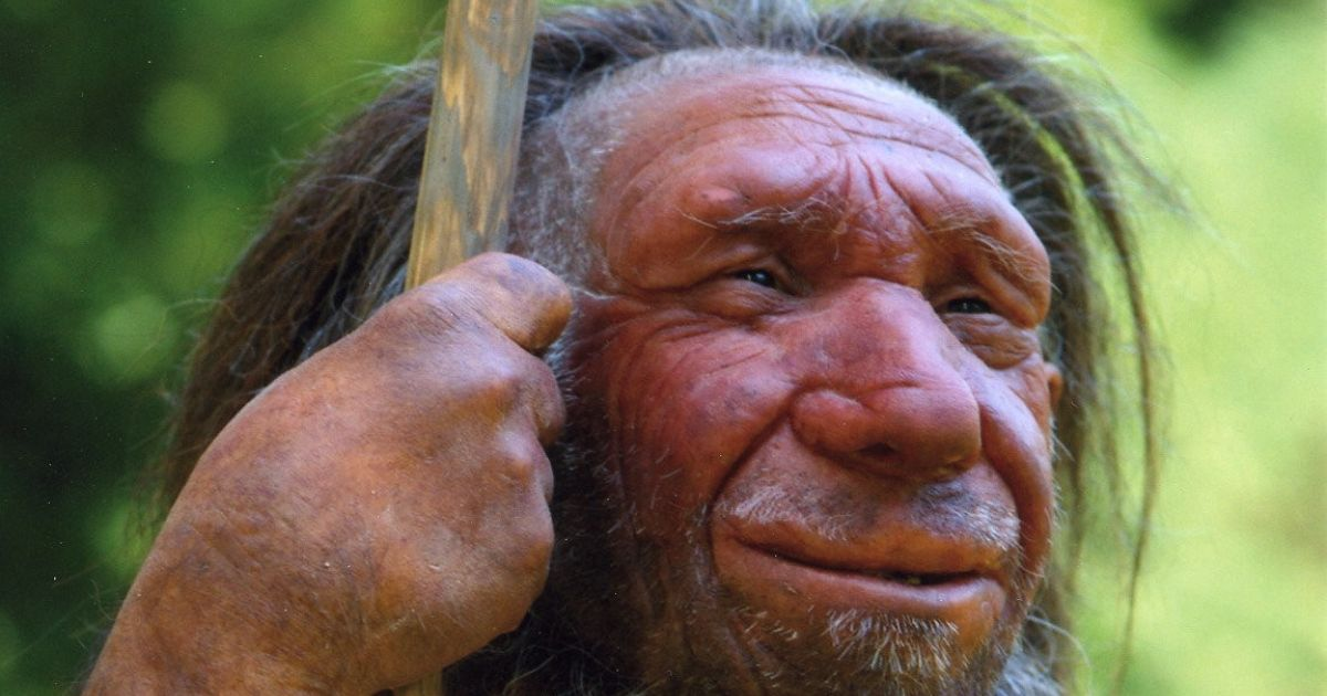 Were There Neanderthals in Denmark? If So, They Could Sail or Swim