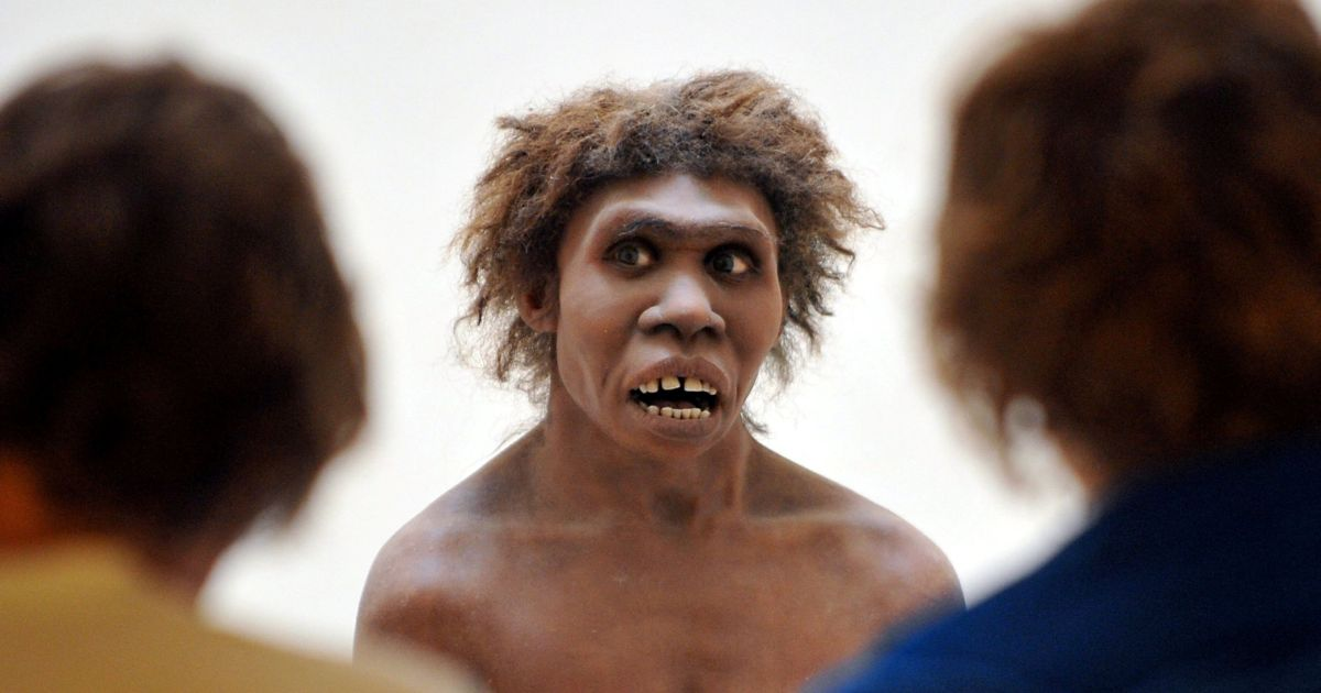 Neanderthals Could Speak, New Study Claims to Prove