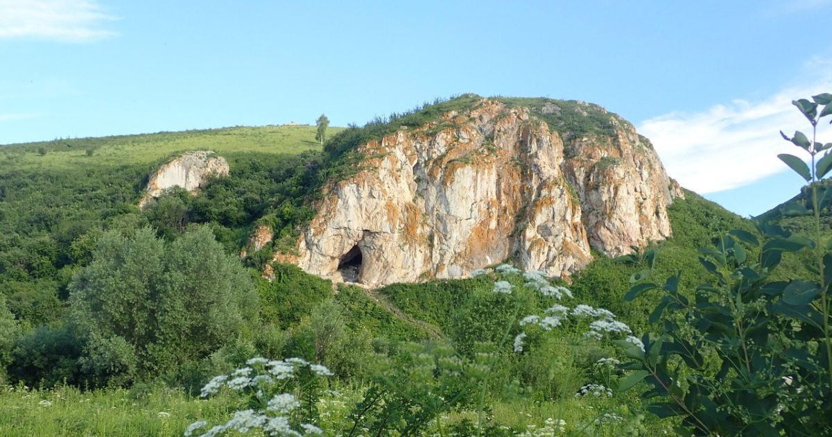 Prehistoric DNA detected in caves reveals secrets of Neanderthal histo... image